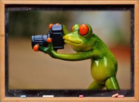 Lavagna con un ranocchio che sta scattando una foto.